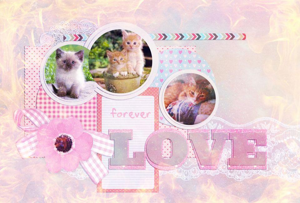 Це приклади фото які я буду вам робити))) Просто так...