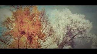 Я до тебе більш не прийду - Українська народна пісня