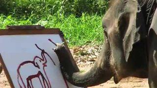 Suda. слон - художник